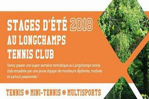 Stage tennis, mini-tennis, mutlisports