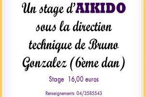 Stage aïkido